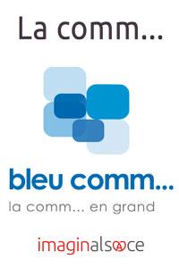 bleucomm2014_net